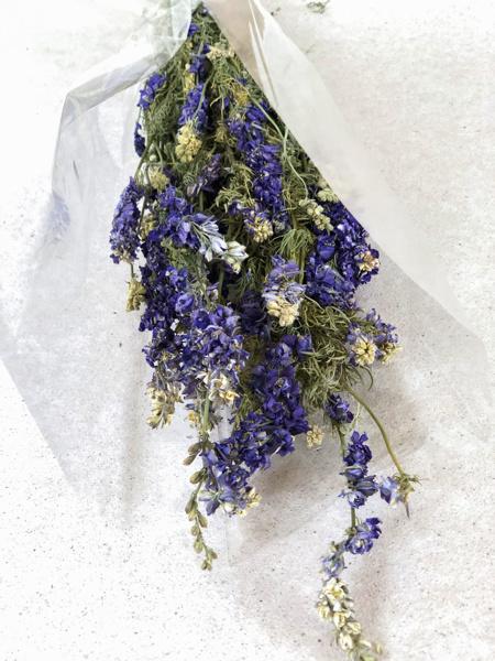 Afbeeldingen van Delphinium blauw