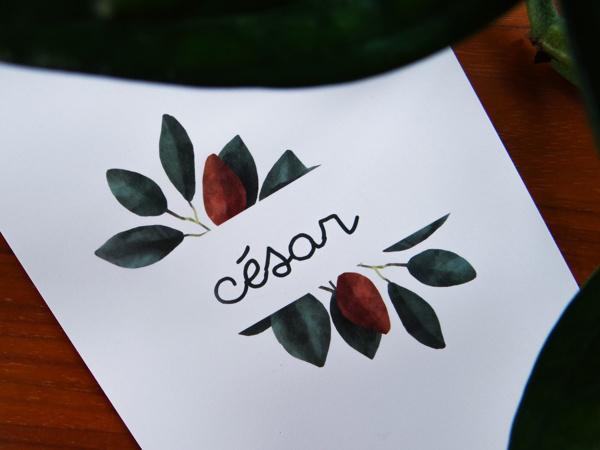 Afbeeldingen van César