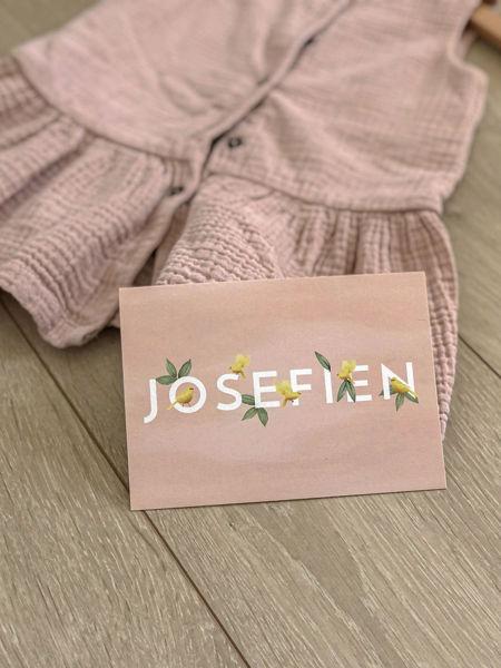 Afbeeldingen van Josefien