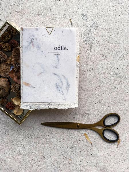 Afbeeldingen van Odile