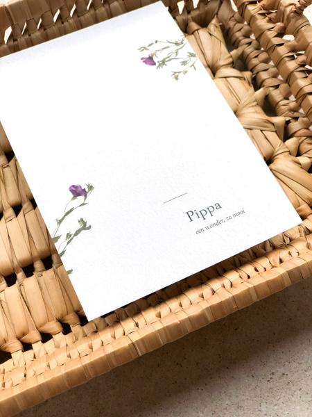 Afbeeldingen van Pippa 2