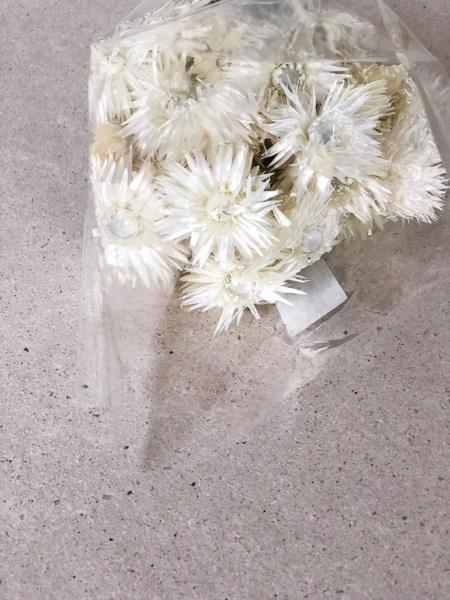 Afbeeldingen van Capblumen naturel