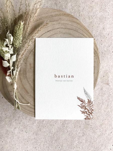 Afbeeldingen van Bastian
