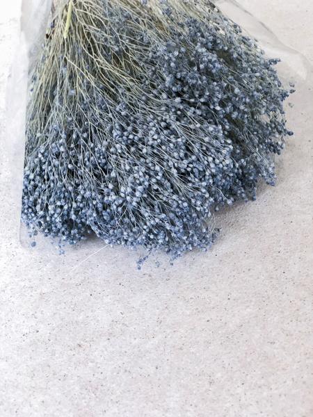 Afbeeldingen van Broom bloom grijsblauw
