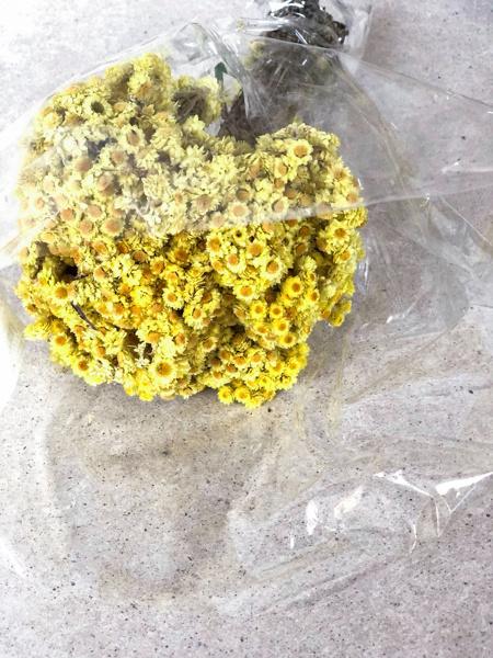 Afbeeldingen van Immortelle geel naturel