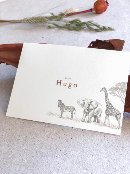 Afbeeldingen van Hugo