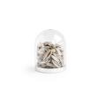 Afbeeldingen van Mini stolp zilver