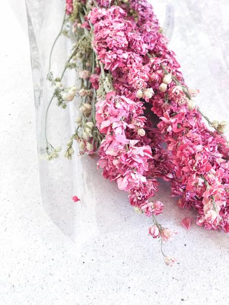 Afbeeldingen van Delphinium roze