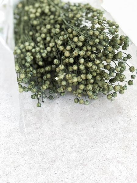 Afbeeldingen van Linum Ice Green