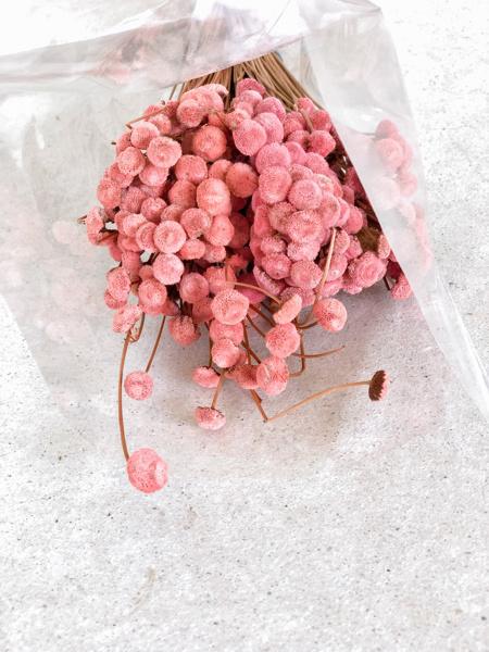 Afbeeldingen van Botao Branco roze