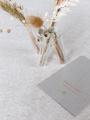 Afbeeldingen van Triovaasje met droogbloemen